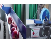 Machining lines Fruit Tech New